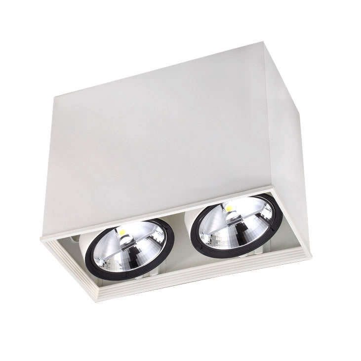 Housing para Downlight Led, KARDAN CITERA, 2 focos